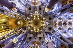 Barcelona; Sagrada Familia