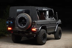 Expedition-Motor-Company-Silver-Wolf-Rear-View-Black-Background
