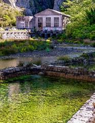 Moss Filled Pond in Kotor, Montenegro