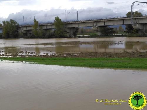 Alluvione_Novembre_2019_00010