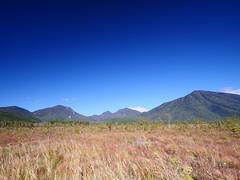 男体山。   戦場ヶ原から撮りました