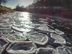 Pancake Ice on the River Sunday Morning
