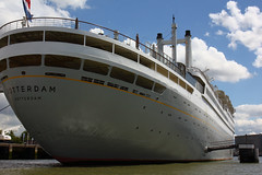 SS Rotterdam 2