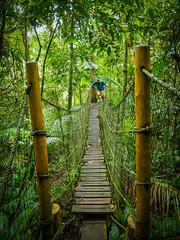 Parque das Neblinas - Bertioga - Brasil