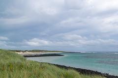 Southern Ocean beach