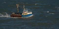 Fishing Boat, Torquay, UK
