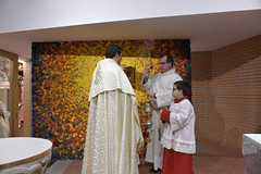 """Te Deum - Bendición Sagrario • <a style=""""font-size:0.8em;"""" href=""""http://www.flickr.com/photos/120415644@N05/49309535326/"""" target=""""_blank"""">View on Flickr</a>"""