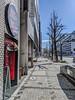 Photo:2019-03-31_山崎川四季之道-名古屋城_001 By
