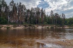 Summer on the Kerzhenets River