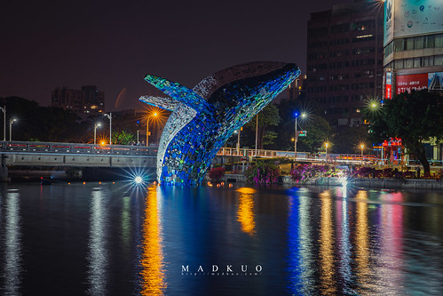 愛河愛之鯨