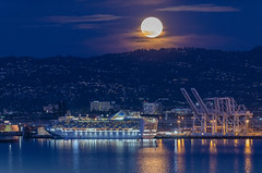 March 2020's full moon rises above the Grand Princess cruise ship hit by coronavirus (COVID-19) at Port of Oakland in Oakland, California, United States, on March 9, 2020. (Photo by Yichuan Cao/Sipa USA)