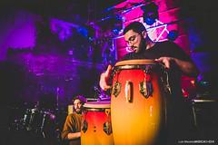 20200306 - Ambiente @ Capote Fest 2020 - 173