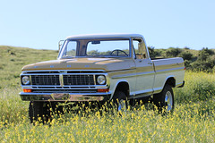 ICON_Ford_70_Reformer_F34_Mountains_Flowers_ALT_IMG_1669