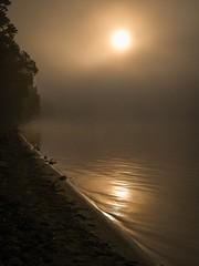 Bronze Sunrise