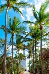 Bill Baggs Cape Florida State Recreation Area