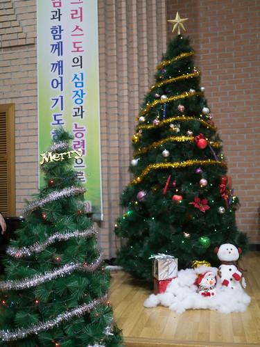 Decorating Christmas Tree_MDY_191124_14