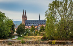 Rhine River - Majestic Cathedral on the Rhine