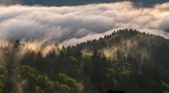 Cloudland Panorama
