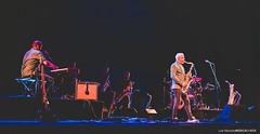 20200803 - Cabrita @ Teatro Maria Matos - 088