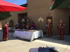 "Blessing of the Grapes 2020 • <a style=""font-size:0.8em;"" href=""http://www.flickr.com/photos/124917635@N08/50233564483/"" target=""_blank"">View on Flickr</a>"