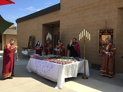 "Blessing of the Grapes 2020 • <a style=""font-size:0.8em;"" href=""http://www.flickr.com/photos/124917635@N08/50234221571/"" target=""_blank"">View on Flickr</a>"