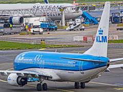 "KLM Boeing B737-800 PH-BCG ""Ivory Gull / Ivoormeeuw"" Amsterdam Schiphol (AMS/EHAM)"