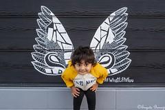 Wings - 2