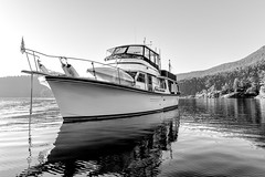 The Boat (2)