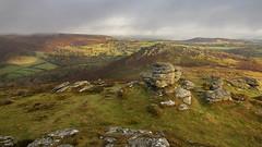 Chinkwell, Dartmoor