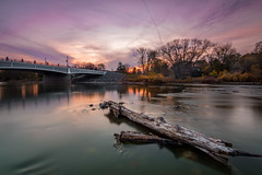 Maumee River in Waterville