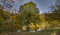 Oct Quarry pond