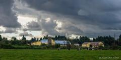 Storm over the farm