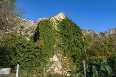 Village Remnants
