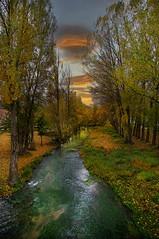 otoño en el rio