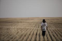 2020-09-18-wheat-fields--elliot-negelev--0130