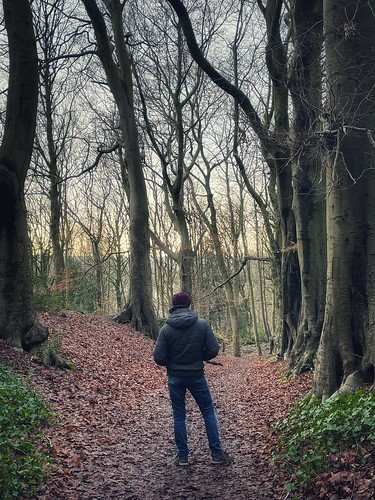 Today is all about...when you go into the woods