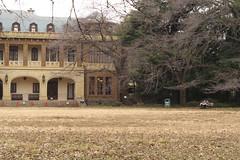 旧前田邸 Meguro kuritsu Maeda-tei