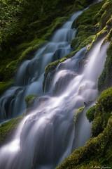 Basalt, moss, water