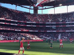 Watching Benfica