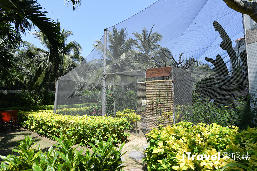 鉑爾曼峴港海灘度假飯店 Pullman Danang Beach Resort (127)