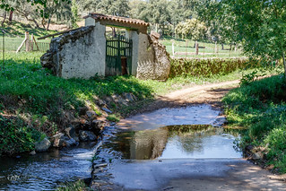 Ribera Santa Ana. 11-04-17.