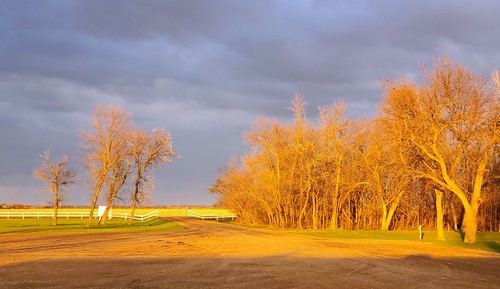 The Golden Hour. View from my RV site.