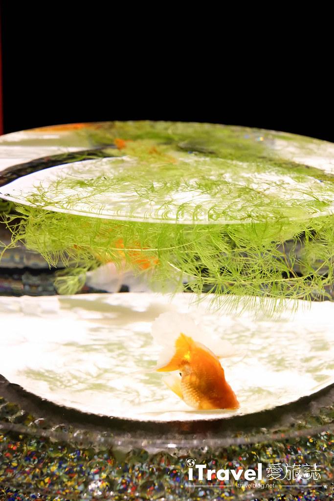 福岡展覽推薦 博多金魚の祭 (7)
