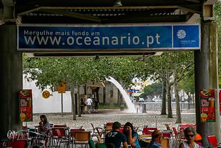 Acuario Lisboa 13-07-07
