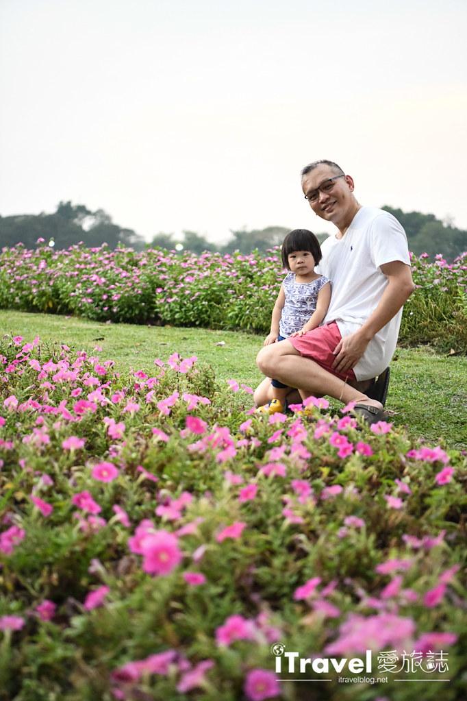 九世皇御苑 King Rama IX Royal Park (38)