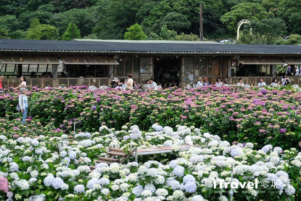 頂湖財福繡球花園 Jai Fu Garden (52)