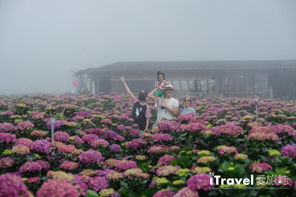 頂湖財福繡球花園 Jai Fu Garden (31)