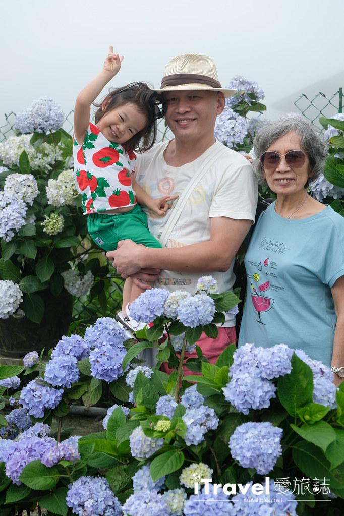 頂湖財福繡球花園 Jai Fu Garden (33)