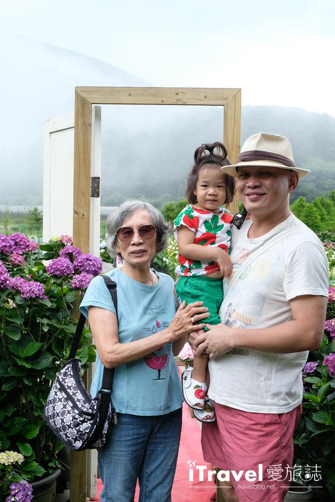 頂湖財福繡球花園 Jai Fu Garden (17)