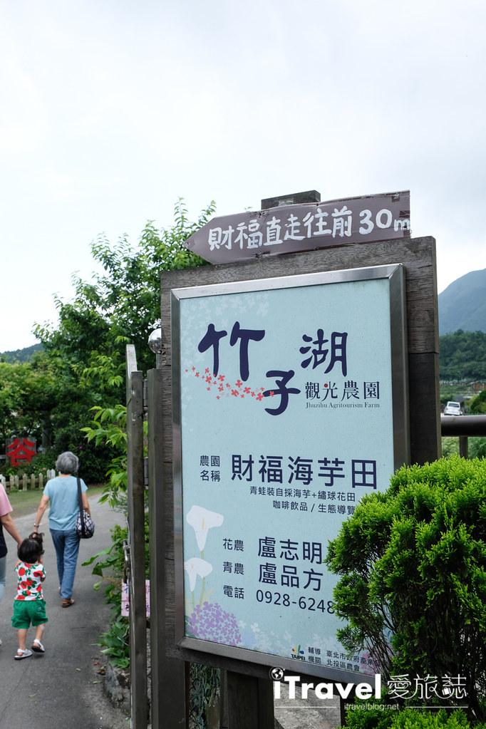 頂湖財福繡球花園 Jai Fu Garden (9)